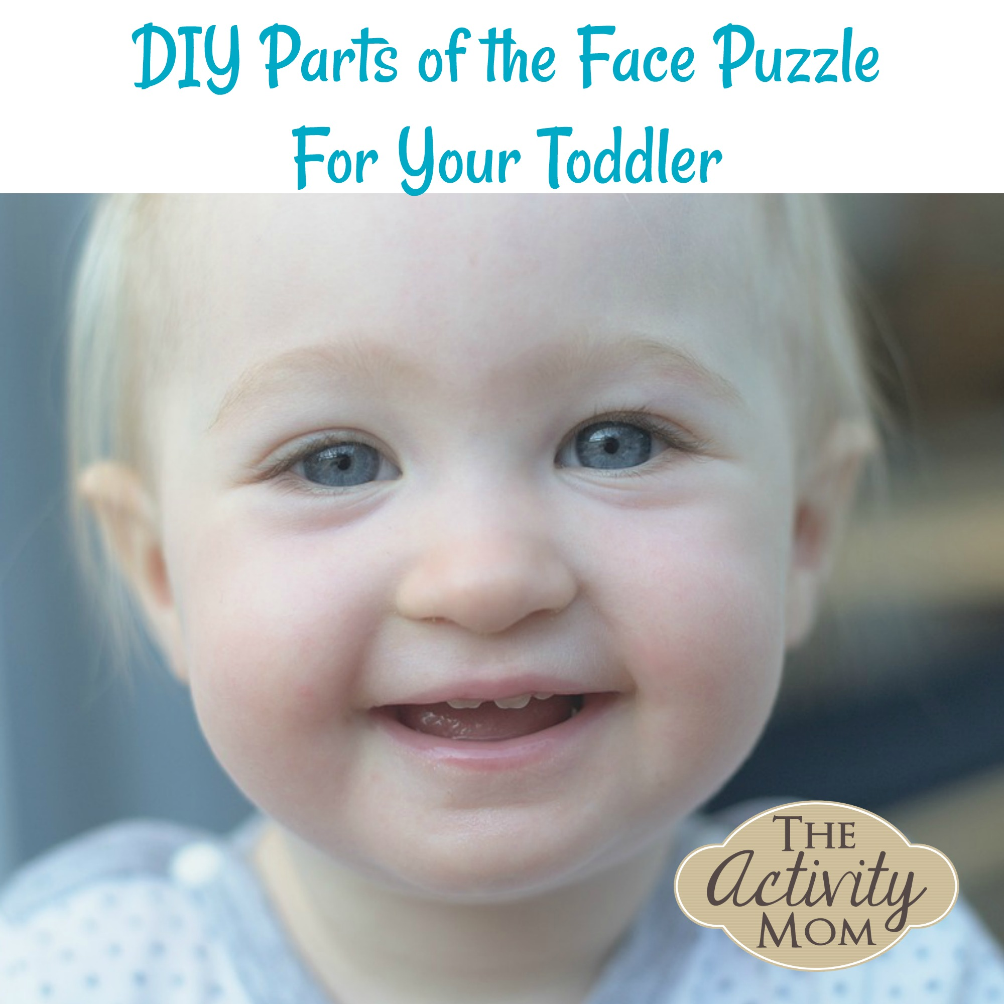 Baby Activity – Simple Parts of the Face Puzzle