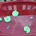 Water Table – Frog Pond