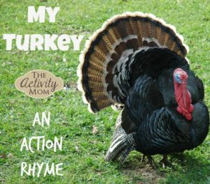 My Turkey Rhyme