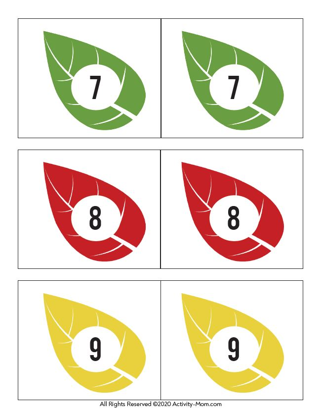 Free Printable Leaf Number Cards