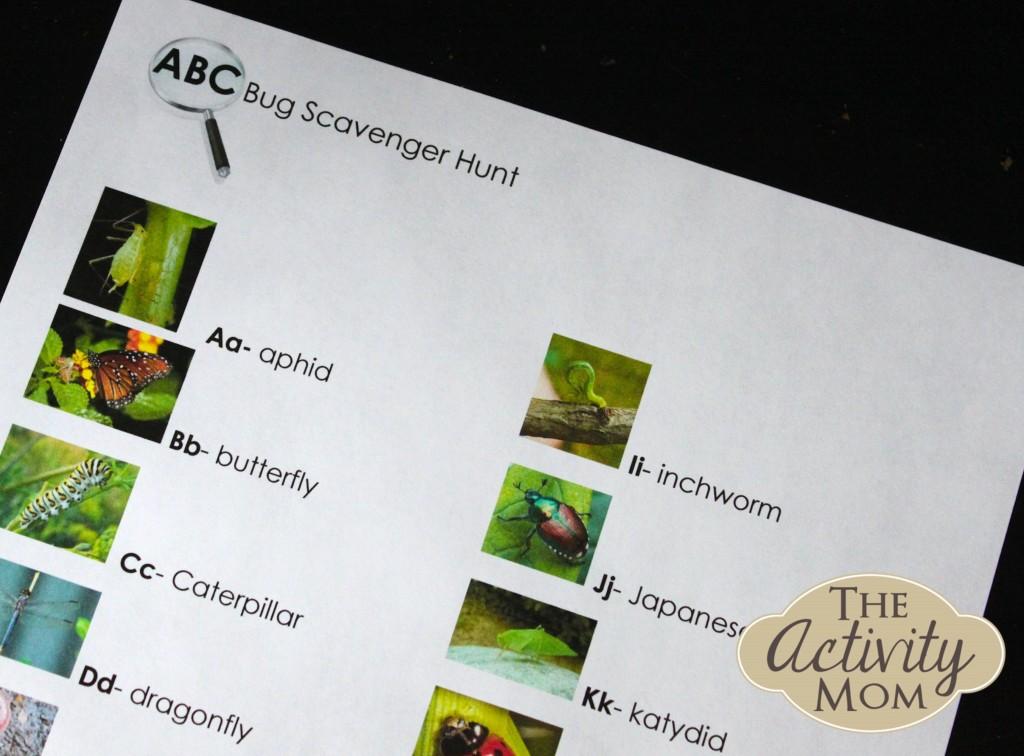 Alphabet Bug Hunt