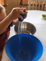 turkey baster water transfer