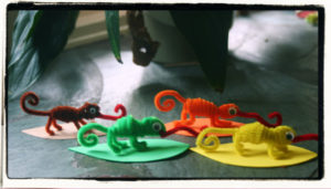 A Color of His Own Pipe Cleaner Craft