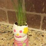 Make Your Own Chia Pet