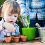 Winter Gardening with Kids
