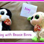 beanie-boo-graphing