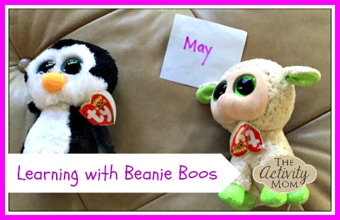 Beanie Boo Graphing