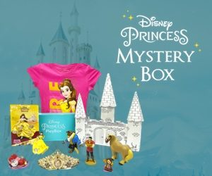 Disney Princess Pley Box