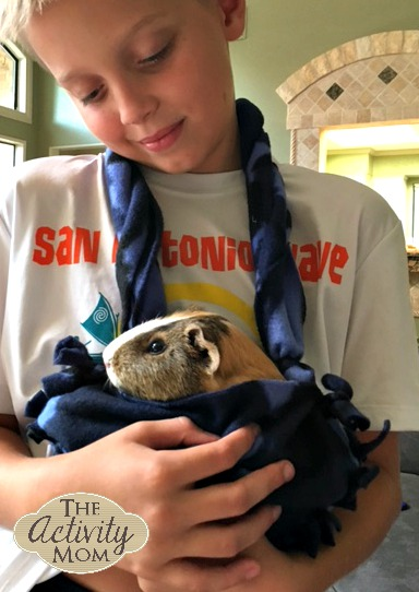 make your own guinea pig bonding pouch
