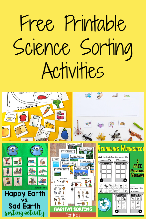 Free Printable Science Sorting Activities