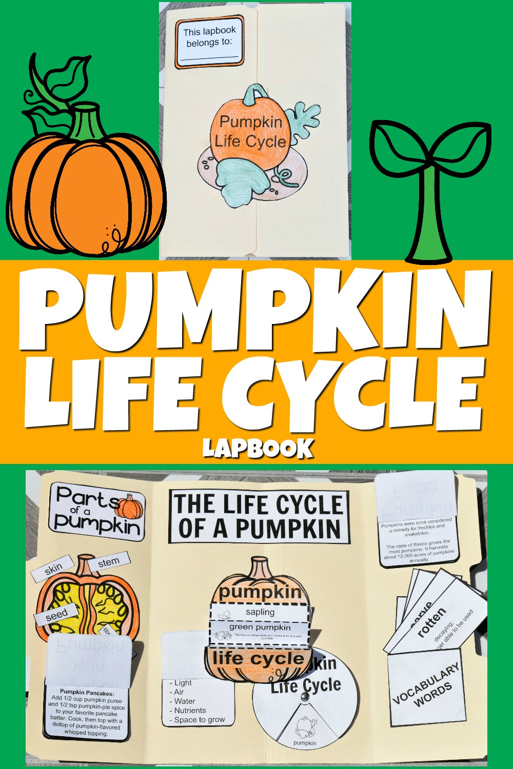 FREE Printable Life Cycle of a Pumpkin Lapbook
