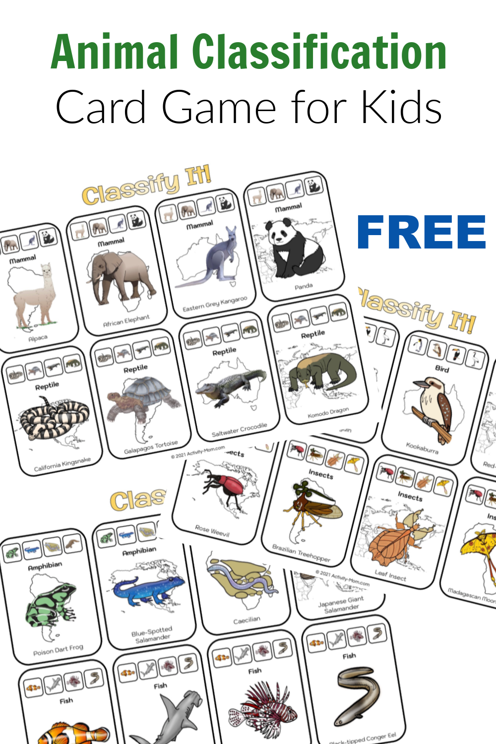 Animal Classification Game for Kids